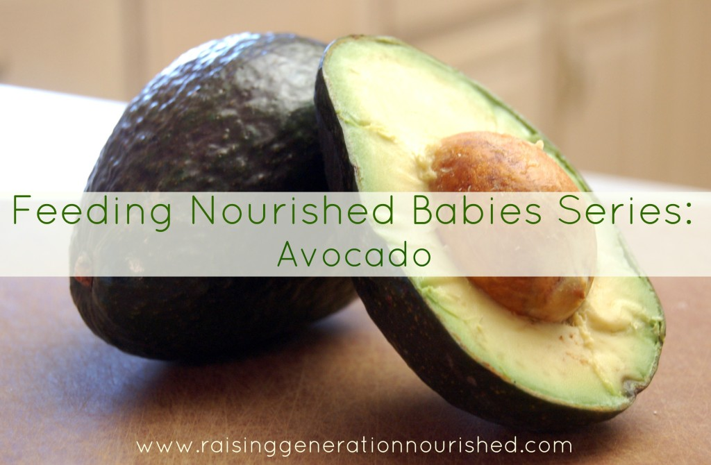Feeding Nourished Babies Series :: Avocado