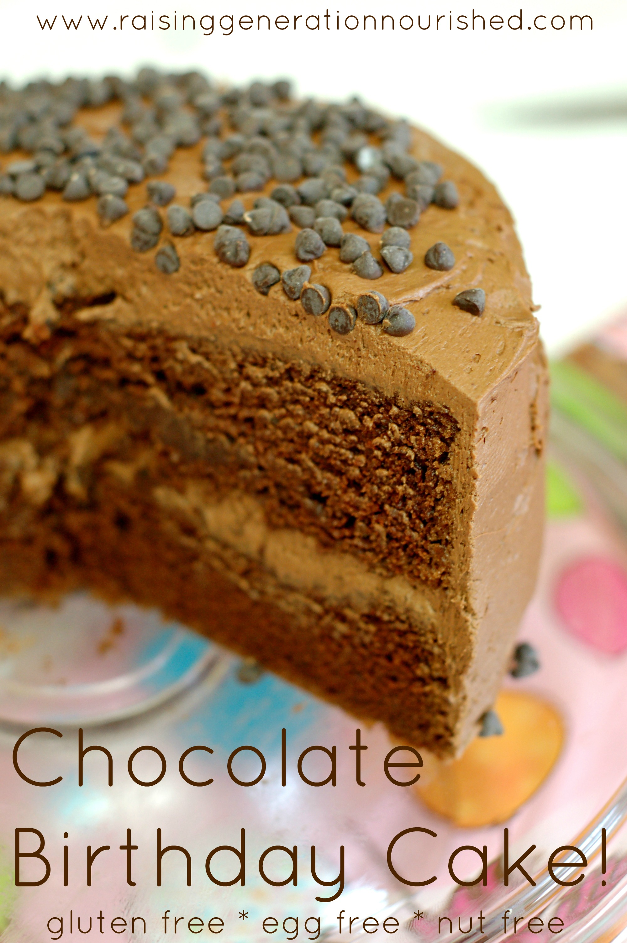 Gluten Free Chocolate Chip Birthday Cake
