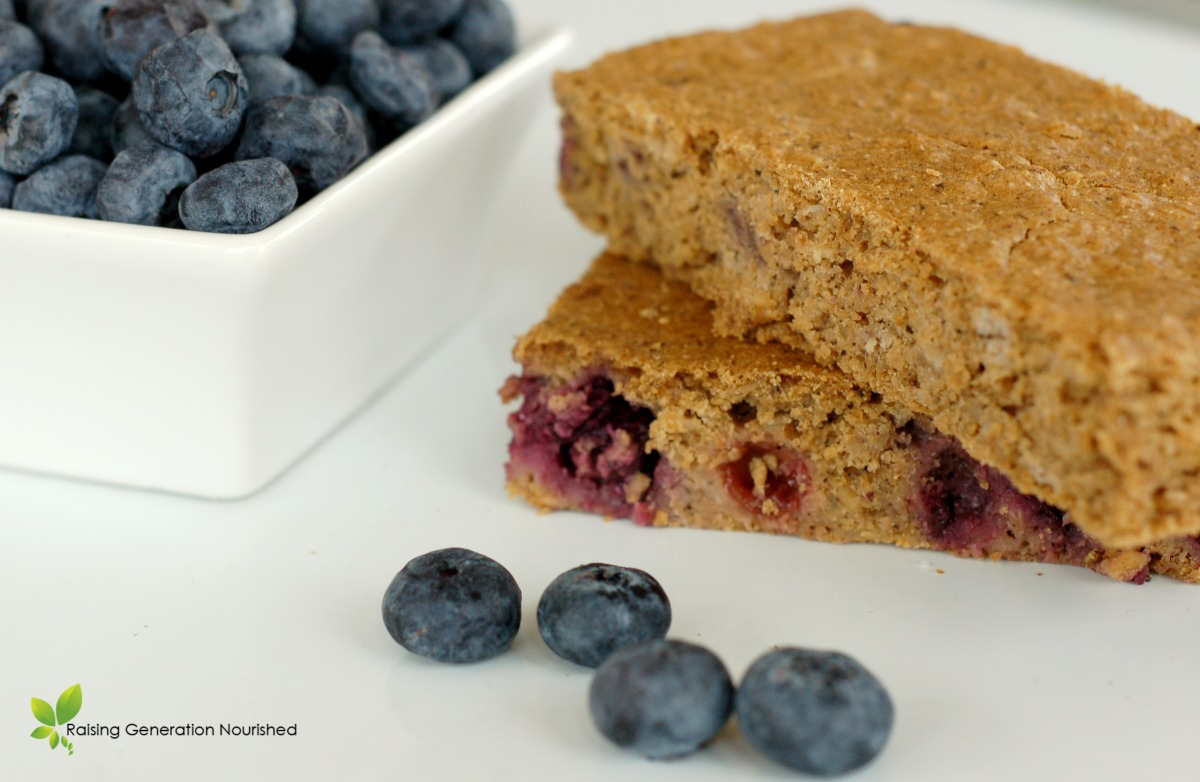 Blueberry Breakfast Bars :: Gluten, Nut, & Refined Sugar Free // Raising Generation Nourished