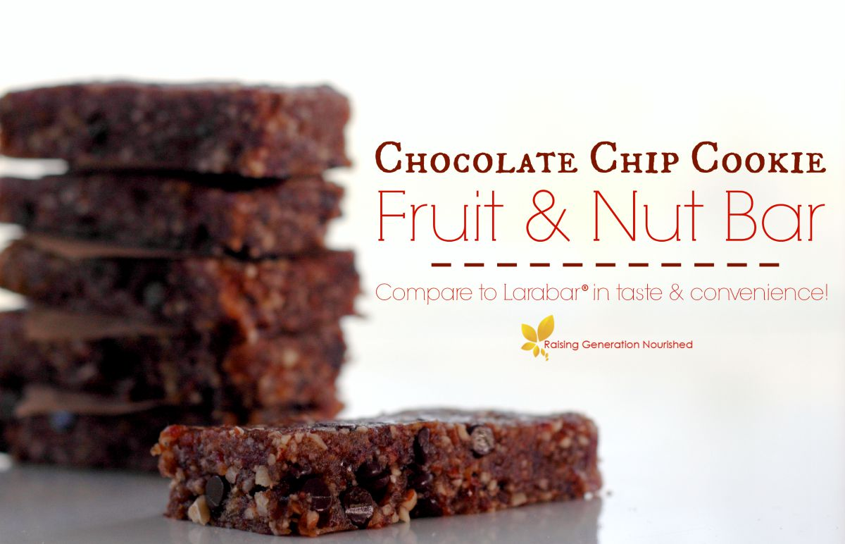 Chocolate Chip Cookie Fruit & Nut Bar (Compare to Larabar!)