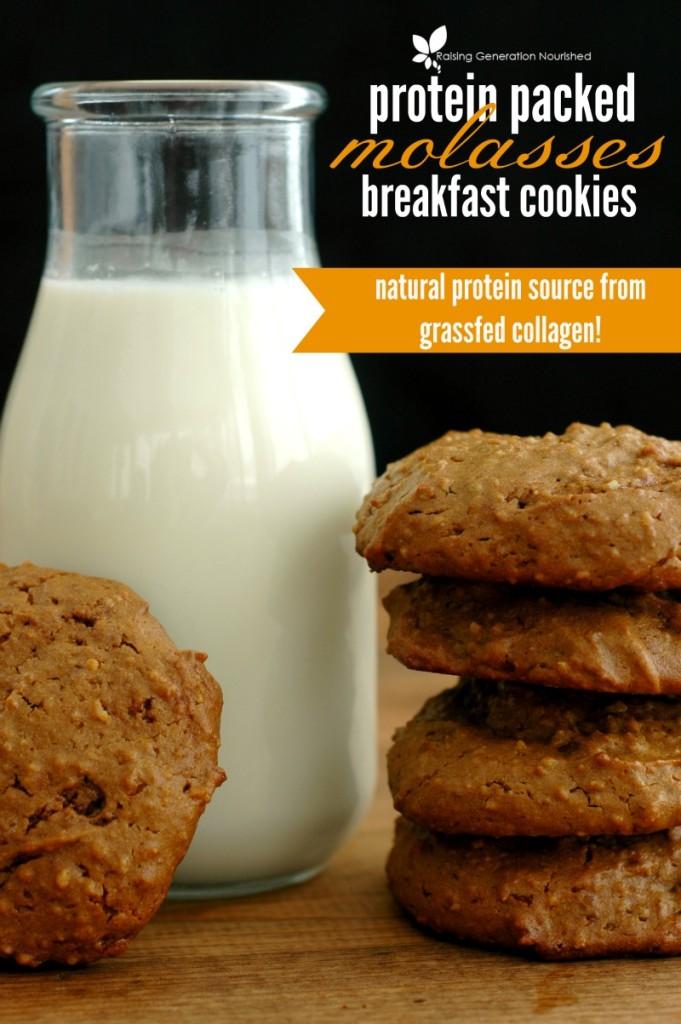 Molasses Protein Breakfast Cookie