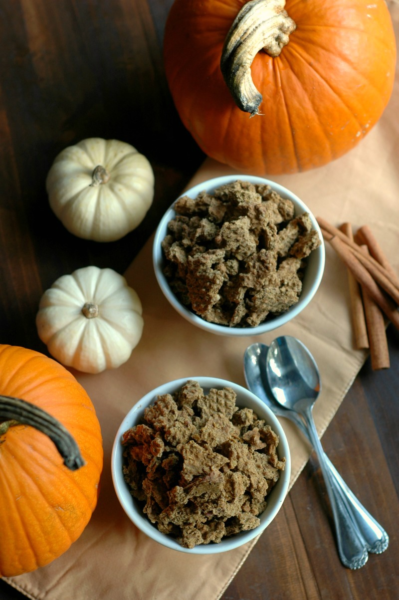 Cinnamon Pumpkin Granola :: Gluten Free with Grain Free Options :: Mineral rich cinnamon pumpkin granola is busy school day ready, and on the go for a fun filled autumn weekends!