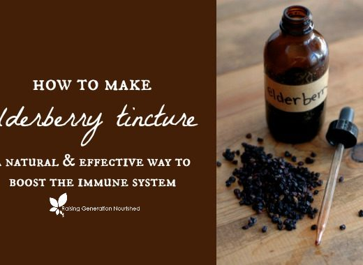 How To Make Elderberry Tincture ::Learn how to make and use an elderberry tincture to effectively battle viruses and boost the immune system!