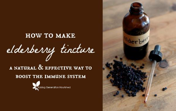 How To Make Elderberry Tincture - Raising Generation Nourished