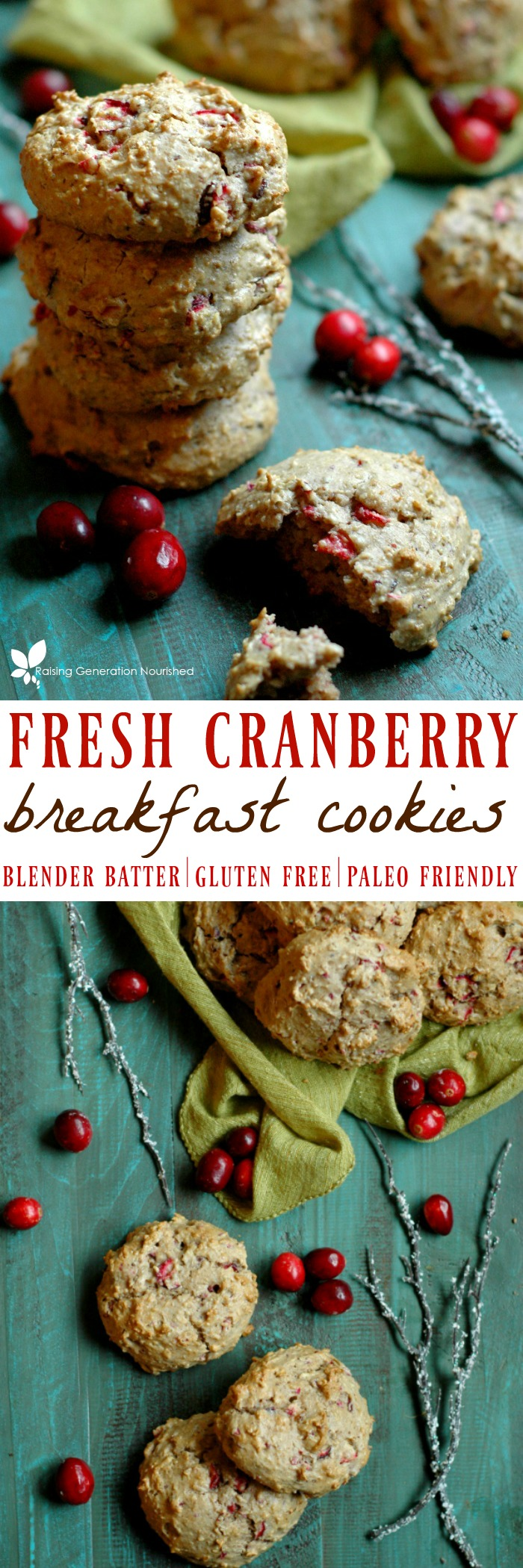 Blender Batter Fresh Cranberry Breakfast Cookies :: Gluten Free, Refined Sugar Free, Paleo Friendly