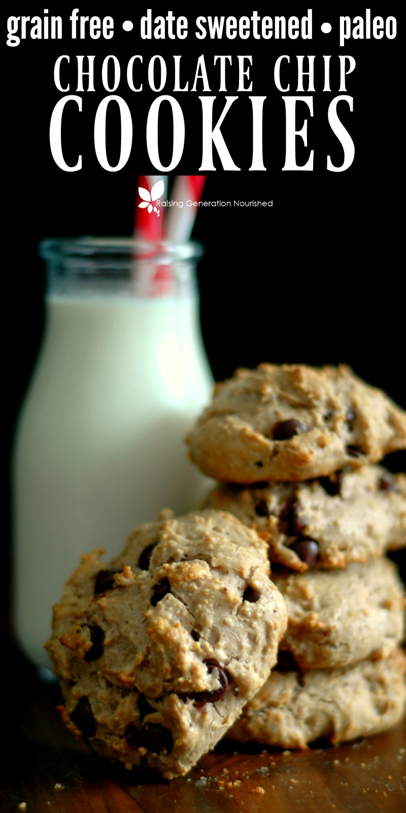 Grain Free Chocolate Chip Cookies :: Date Sweetened & Paleo Friendly!