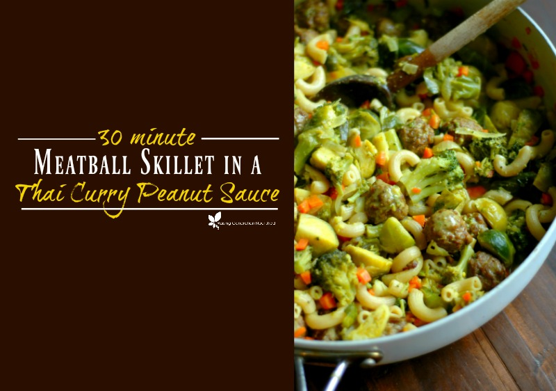 30 Minute Meatball Skillet in a Curry Peanut Sauce :: Nut Free Options Included!