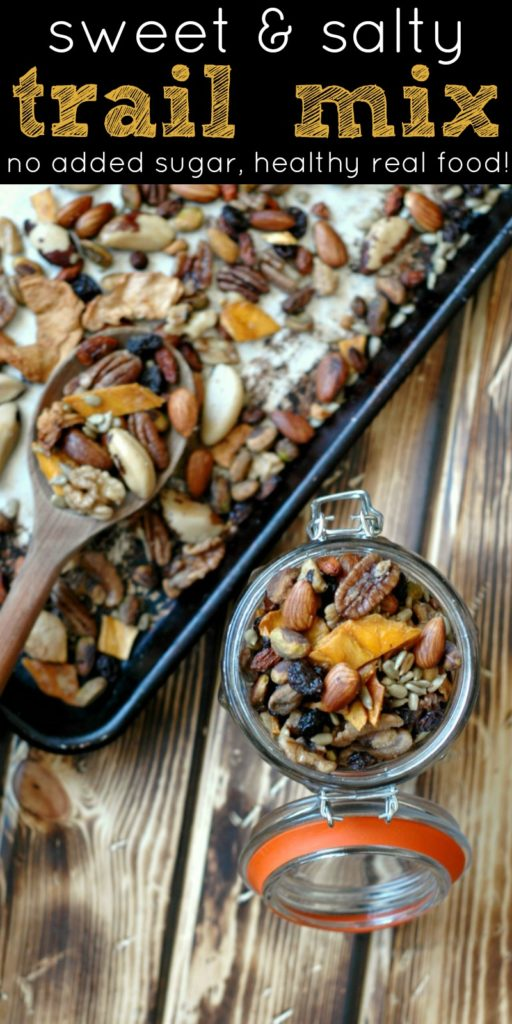 Healthy Salty and Sweet Trail Mix