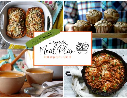 Nourishing 2 Week Meal Plan {Fall Inspired Part 1}